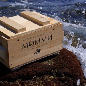Лечение с помощью минеральных грязей со дна Японского моря в санатории